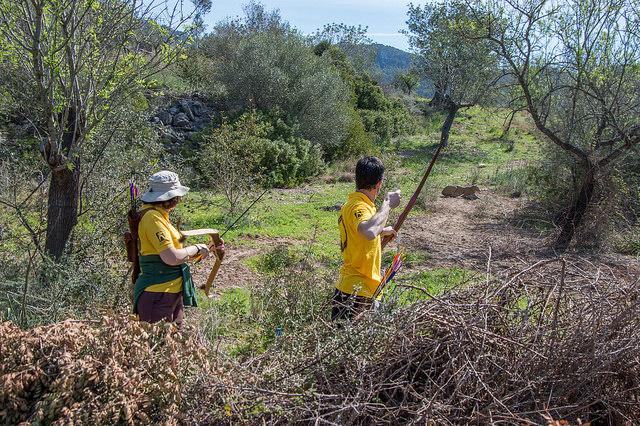 Tirada Bosque 3D - Arquers de Mallorca